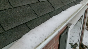 leaf relief gutter guard
