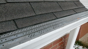 Gutter Rx perforated gutter guard