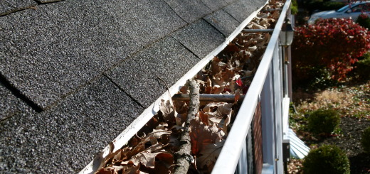Leaves and sticks clogging gutter