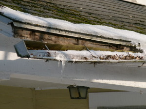 Gutter dislodged from facia boards by snow, ice and leaves
