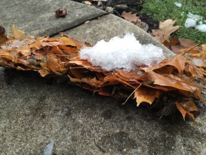 Ice block leaf section removed from gutter