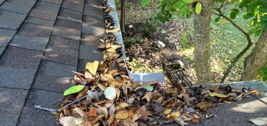 rhino gutter guard that was improperly installed is holding leaves on the top cover
